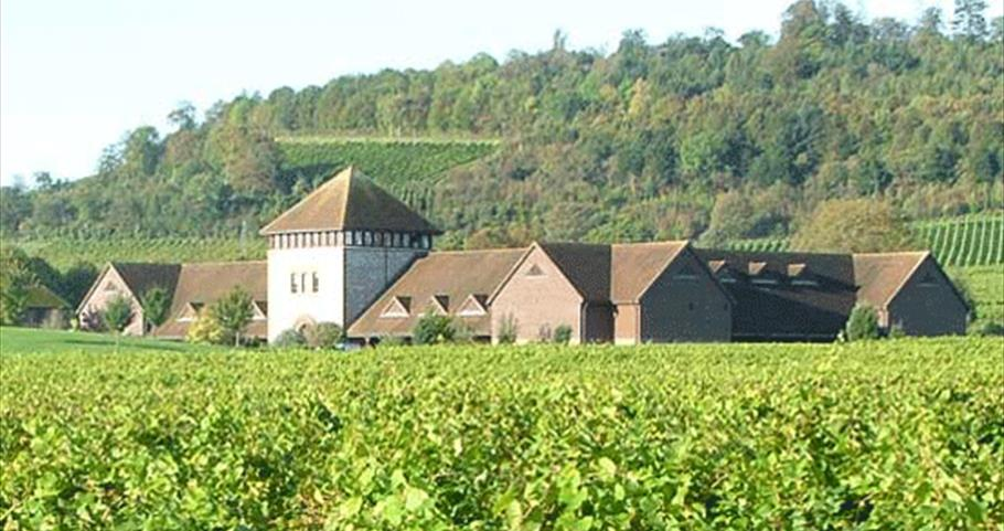 Denbies Wine Estate, Surrey