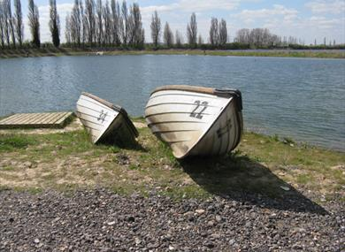 Photo of Buckland Lake Reserve
