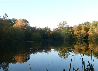 Yateley Common Country Park