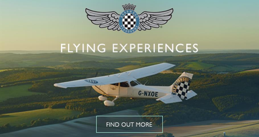 Goodwood Flying Experiences