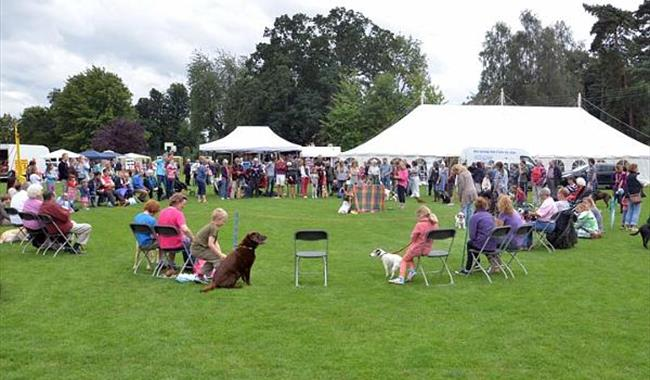 Steeple Aston Flower and Fun Dog Show
