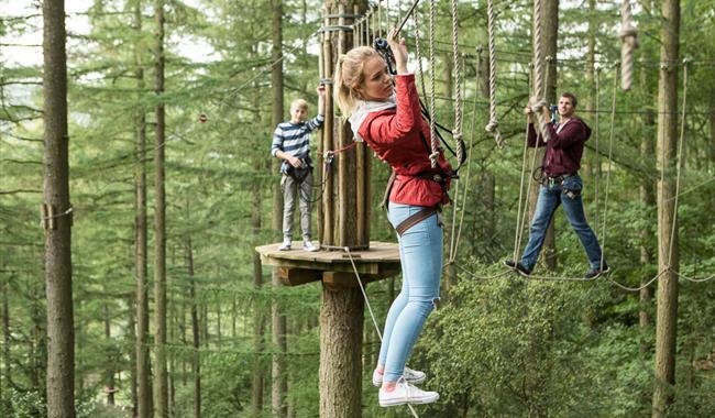 Go Ape At Alice Holt Forest Adventure Park Playground