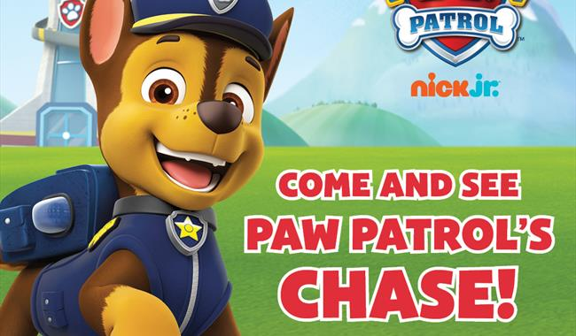 PAW PATROL Chase Meet & Greet