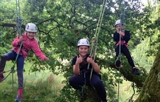 Tree Climbing at Cliveden