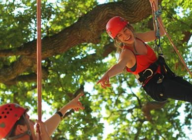 Isle of Wight, Things to Do, Tree climbing, Appley Park, Ryde,