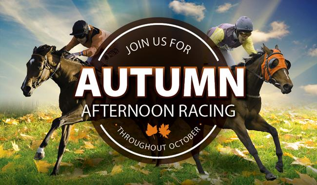 Autumn Afternoon Racing at Royal Windsor Racecourse