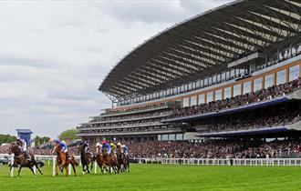 Racing at Ascot 2019: Sagaro Stakes Raceday