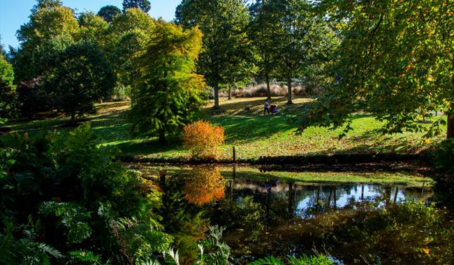 The Savill Garden in Autumn