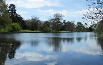 The Vyne Lake