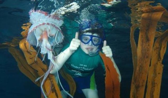 Undersea Explorers Childrens Events In Southampton Southampton Visit South East England