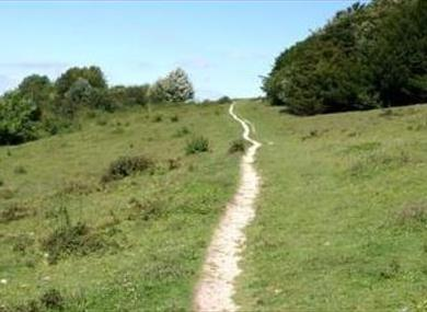 Watlington Hill
