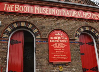 Booth Museum of Natural History