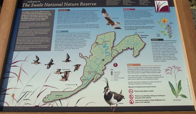 The Swale National Nature Reserve